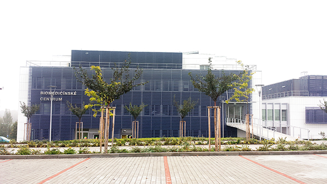 biomedicinske centrum plzen